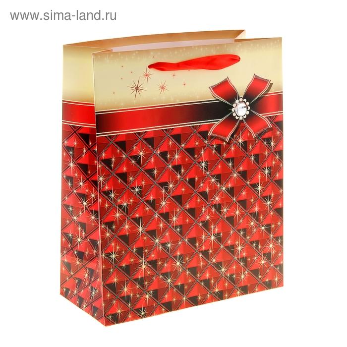 """Пакет ламинированный """"Блеск"""", цвет красный"""