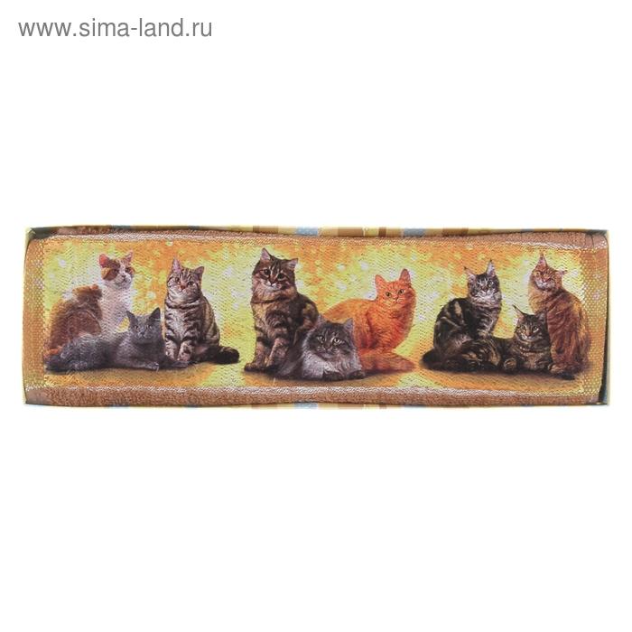 """Полотенце махровое Collorista """"Кошки"""", размер 30х70 см, 100% хлопок, 450 г/м2"""