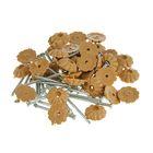 Гвозди декоративные светло-коричневые 1,6х25 мм, 40 шт.