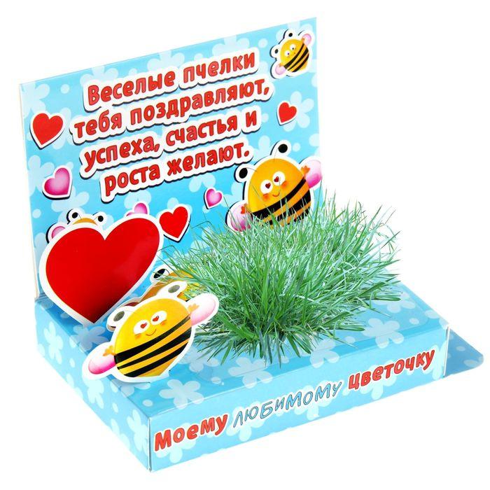 """Открытка-растущая трава """"Моему любимому цветочку"""""""