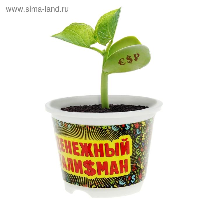 """Растущая трава с волшебными бобами """"Расти, прибыль"""""""