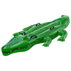 Игрушка для плавания «Аллигатор», с ручками, 203 х 114 см, от 3 лет, 58562NP INTEX