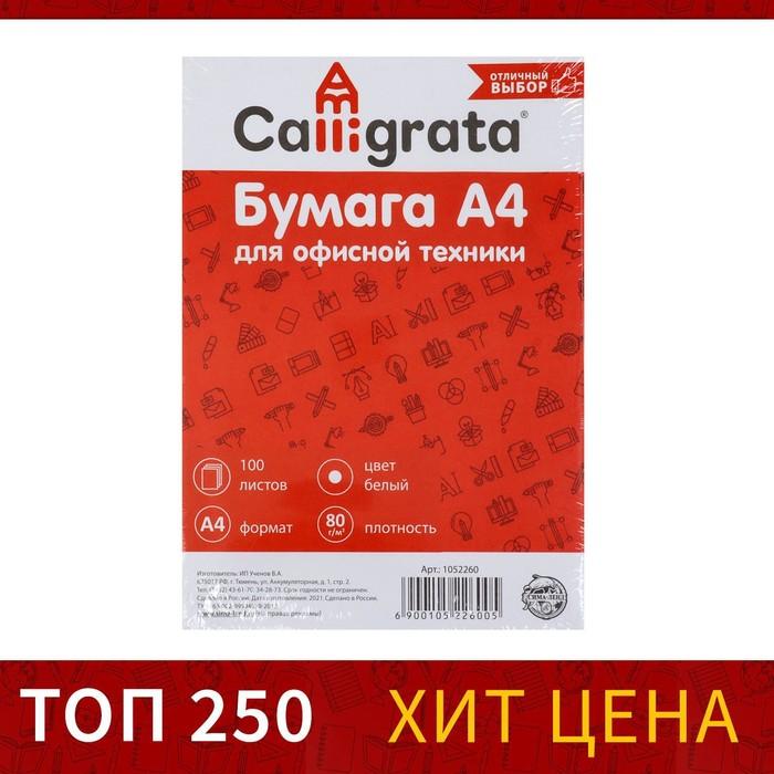 Бумага А4, 100 листов SVETOCOPY эконом, 80г/м2, 96%, в т/у пленке