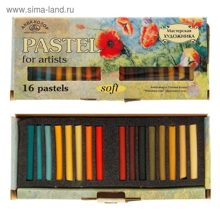 Пастель сухая 16 цветов набор №3