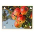 """Часы настенные прямоугольные """"Яблоки"""", 20х26 см микс"""