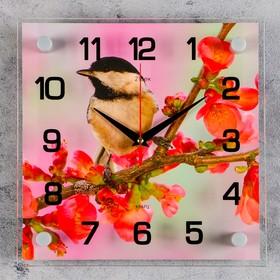 """Часы настенные, серия: Животный мир, """"Птичка на ветке"""", 25х25  см, микс"""