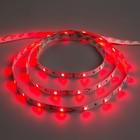 Led light strip 12V, SMD5050, 5m, IP33, 30 LEDs, 7.2 W/m, 14-16 LM/LED 1 DC, RED