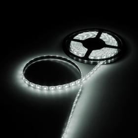 Светодиодная лента 12В, SMD5050, 5 м, IP65, 60 LED, 14.4 Вт/м, 14-16 Лм/1 LED, DC, БЕЛЫЙ