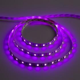 Светодиодная лента 12В, SMD5050, 5 м, IP33, 60 LED, 14.4 Вт/м, 14-16 Лм/1 LED, DC, ФИОЛЕТОВЫЙ