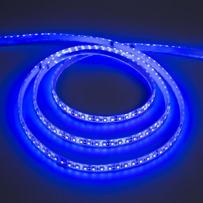 Светодиодная лента 12В, SMD3528, 5 м, IP68, 120 LED, 9.6 Вт/м, 6-7 Лм/1 LED, DC, СИНИЙ
