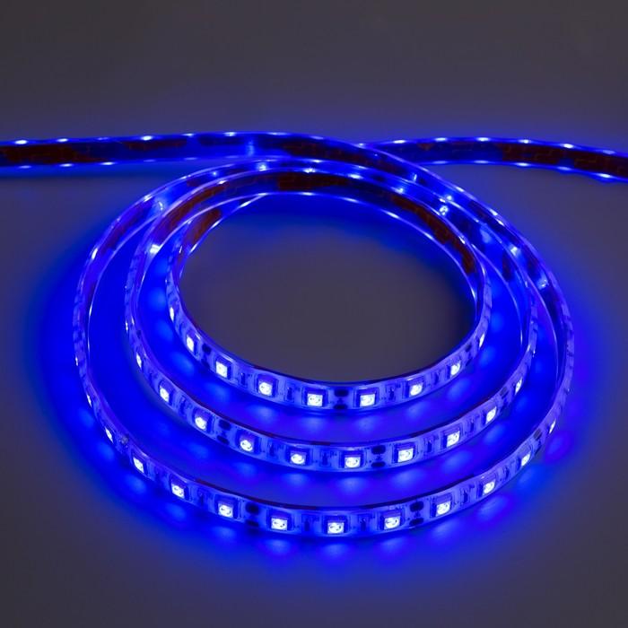 Светодиодная лента 12В, SMD5050, 5 м, IP68, 60 LED, 14.4 Вт/м, 14-16 Лм/1 LED, DC, СИНИЙ
