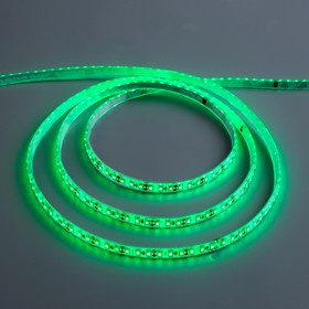 12V led strip light, SMD3528, 5m, IP68, 120 LED, 9.6 W/m, 6-7 LM/LED 1 DC, GREEN