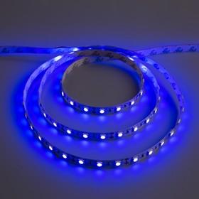 Светодиодная лента 12В, SMD5050, 5 м, IP33, 60 LED, 14.4 Вт/м, 14-16 Лм/1 LED, DC, СИНИЙ