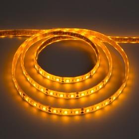 Светодиодная лента 12В, SMD5050, 5 м, IP68, 60 LED, 14.4 Вт/м, 14-16 Лм/1 LED, DC, ЖЁЛТЫЙ