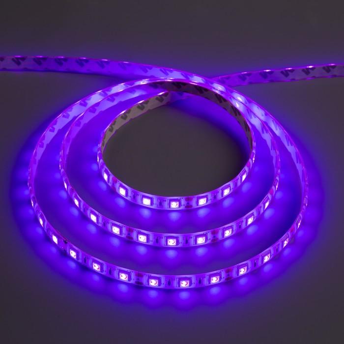 Светодиодная лента 12В, SMD5050, 5 м, IP65, 60 LED, 14.4 Вт/м, 14-16 Лм/1 LED, DC, ФИОЛЕТОВЫЙ - фото 685619714