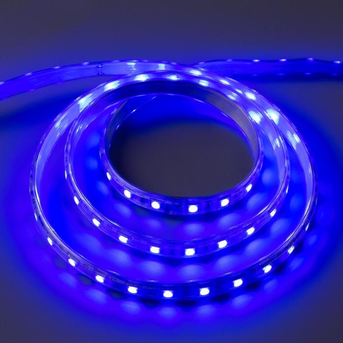 Светодиодная лента 220В, SMD5050, 5 м, IP65, 60 LED, 11 Вт/м, 16-18 Лм/1 LED, AC, СИНИЙ