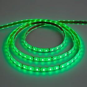 Светодиодная лента 12В, SMD5050, 5 м, IP68, 60 LED, 14.4 Вт/м, 14-16 Лм/1 LED, DC, ЗЕЛЁНЫЙ