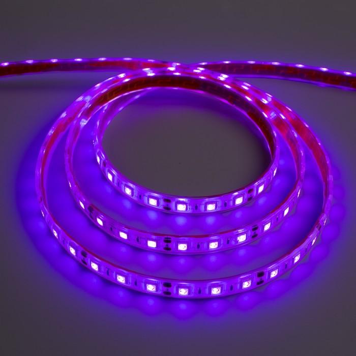 Светодиодная лента 12В, SMD5050, 5 м, IP68, 60 LED, 14.4 Вт/м, 14-16 Лм/1 LED, DC, ФИОЛЕТОВЫЙ