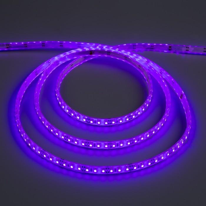 Светодиодная лента 12В, SMD3528, 5 м, IP68, 120 LED, 9.6 Вт/м, 6-7 Лм/1 LED, DC, ФИОЛЕТОВЫЙ