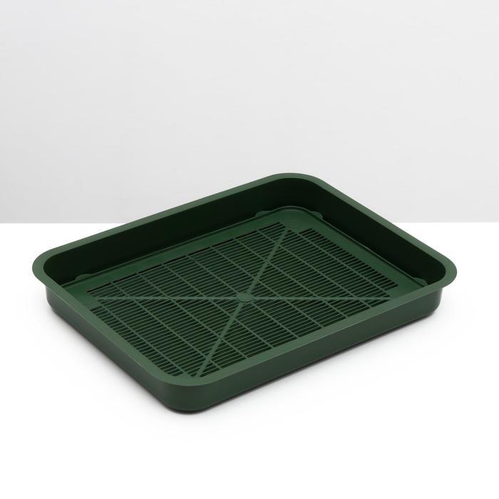 Туалет для котят, 35х 26 х 4 см, зеленый