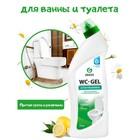 Средство для чистки сантехники WС-GEL   0,75 кг