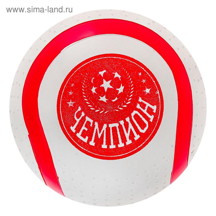 "Мяч диаметр 100 мм ""Чемпион"""
