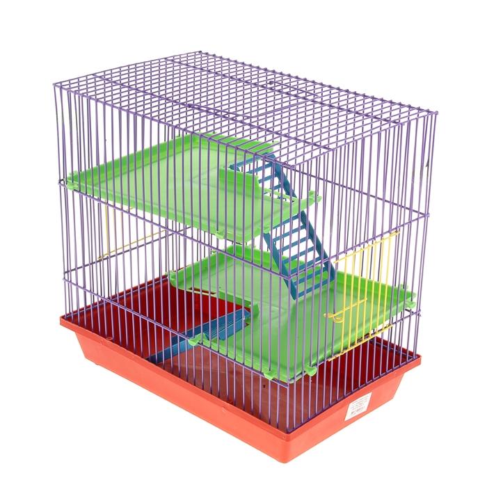 Клетка для грызунов 3-эт, пластиковые полки, лесенки, 36 х 24 х 38 см  микс цветов