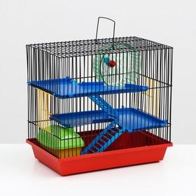 Клетка для грызунов 3-эт с пластиковыми полками и лесенками+домик и колесо,36 х 24 38см микс