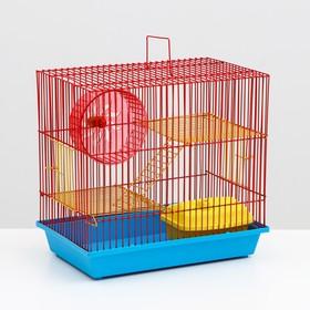 Клетка для грызунов 3-эт, укомплектованный, 36 х 24 х 38 см микс цветов
