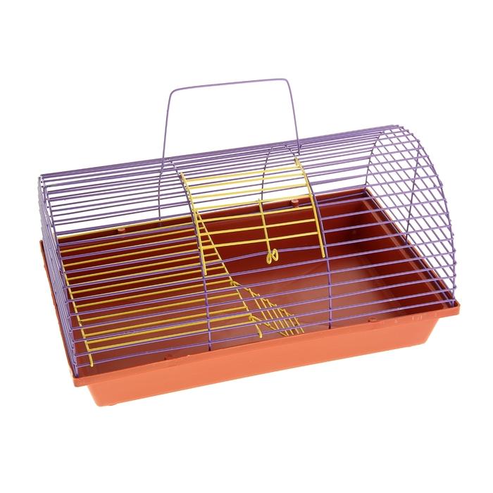 Клетка для грызунов полукруглая с метал.полкой и лесенкой,36 х 24 х 22 см  микс цветов
