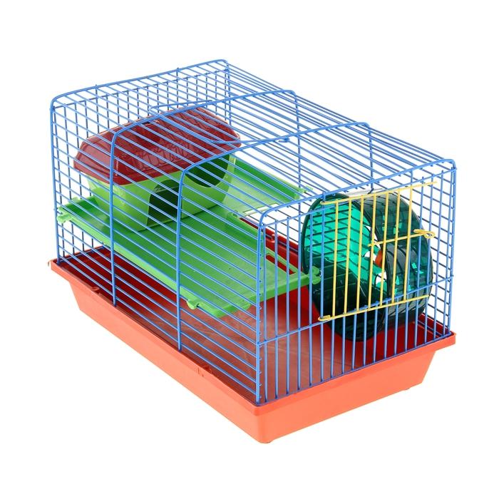 Клетка для грызунов 2-эт, пластиковые полочки, лесенка, домик, колесо, 36 х 24 х 27 см