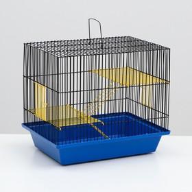 """Клетка для грызунов """"Гризли 3"""" с металлическими полками и лесенками, 41 х 30 х 38 см микс"""