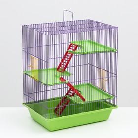 """Клетка для грызунов """"Гризли 4""""  с пластиковыми полками и лесенками, 41 х 30 х 52 см микс"""