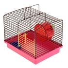 Клетка для джунгариков малая (колесо + миска), 24 х 19 х 20 см