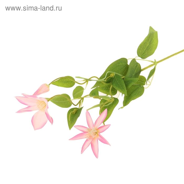 """Цветы искусственные """"Розовый клематис"""""""