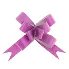 "Bow-tie №1,2 ""Inv"", color raspberry"
