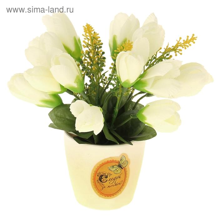 """Декоративный букет в горшке """"Следуй за мечтой"""", белые тюльпаны"""