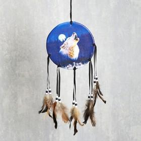 """Ловец снов """"Воющий волк"""" в Донецке"""