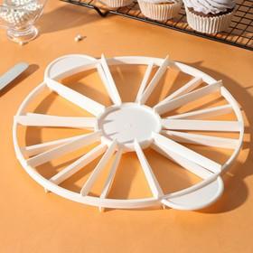 Делитель для торта пластиковый 10/12 частей 26,5 см, цвет МИКС