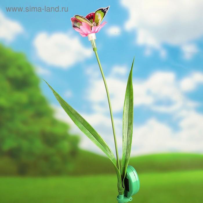 """Декоративный штекер на солнечной батарее """"Бабочка на цветке"""" микс"""