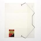 Папка на резинке А4 Proff. Next полупрозрачная корешок 40мм, пластик 0,7мм