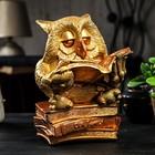 "Копилка ""Сова на книгах"" золото, 27 см"