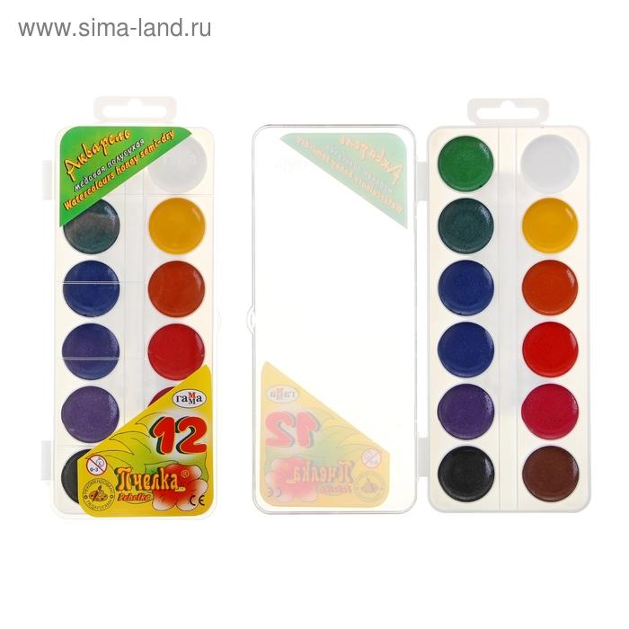 Акварель «Гамма ПЧЕЛКА», 12 цветов, в пластиковой коробке, без кисти