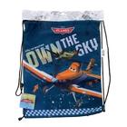 Сумка-рюкзак для обуви Planes 43*34см