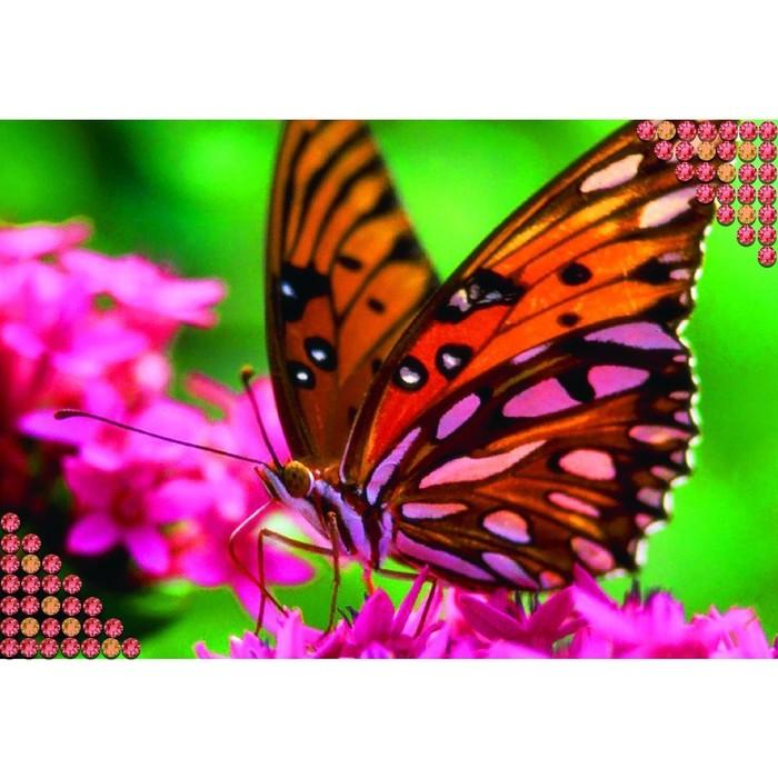 """Алмазная вышивка с полным заполнением """"Бабочка"""", 22 х 32 см - фото 108250333"""