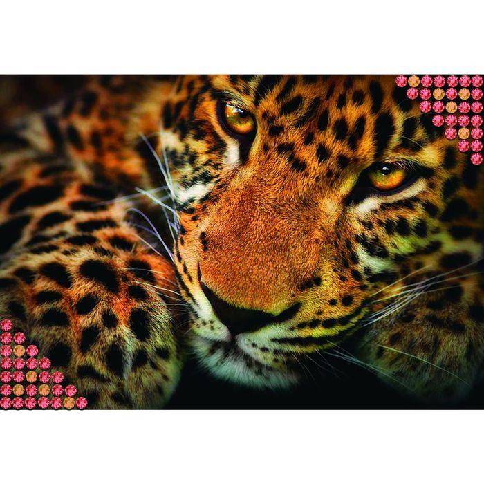 """Алмазная вышивка с полным заполнением """"Леопард"""", 22 х 32 см"""