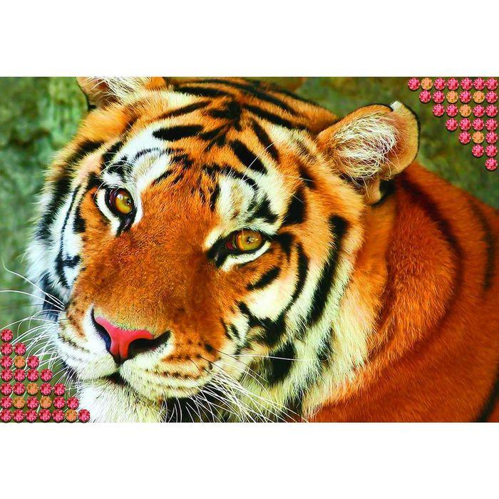 """Алмазная вышивка с полным заполнением """"Тигр"""", 22 х 32 см"""