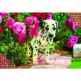"""Diamond embroidery with full filling """"Dalmatians"""", 22 x 32 cm"""