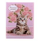 """Записная книжка твёрдая обложка А7, 64 листа """"Котёнок на розовом"""", глянцевая ламинация"""