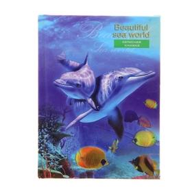 Записная книжка А7, 64 листа «Мир дельфинов», твёрдая обложка, глянцевая ламинация